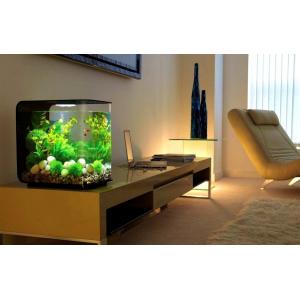 Где лучше поставить аквариум