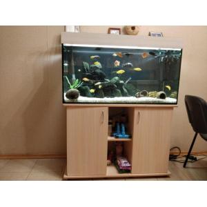 Установка аквариума 200 литров в квартире