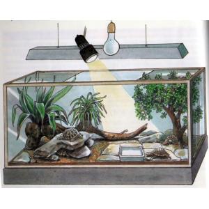 Террариум для черепах в квартиру