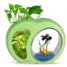 """Аквариум комплект """"sunsun"""" YB-01 зеленый, 3 литра"""