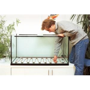 Правильный обогрев аквариума