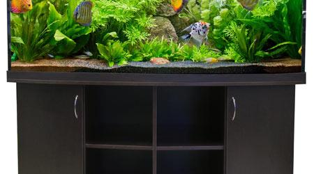 Купить аквариум с тумбой