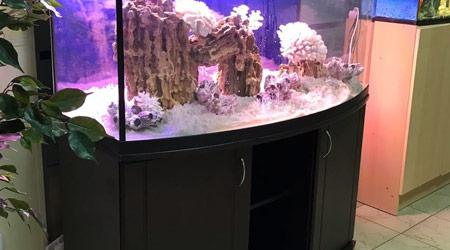 Тумбы под панорамные аквариумы