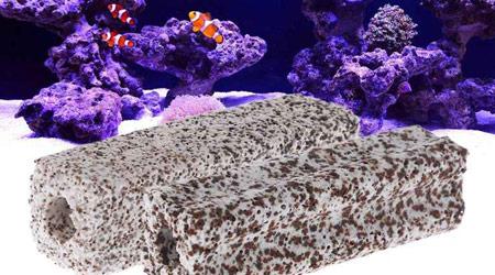 Живые культуры бактерий для аквариума
